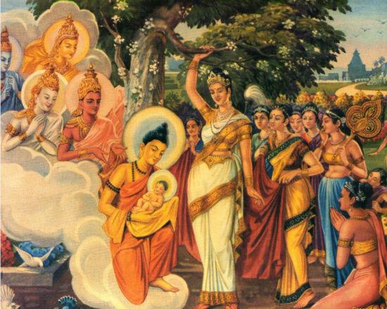 сидхартха младенец