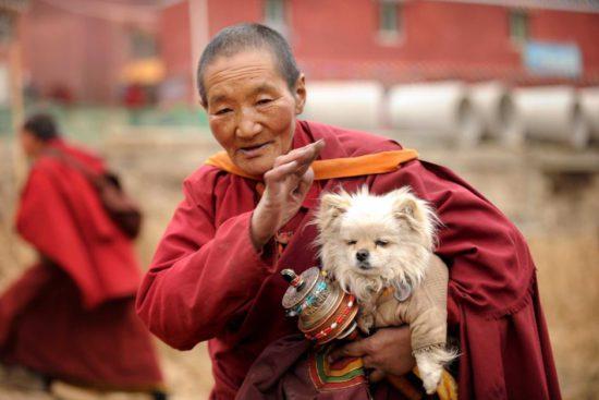 Монах с барабаном и собакой