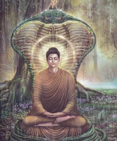 Сидхартха во время медитации под защитой кобры