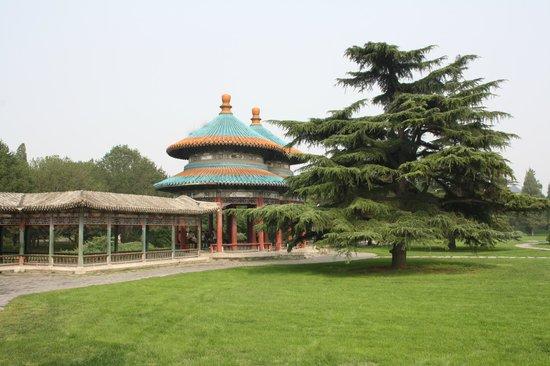 Павильоны в парке