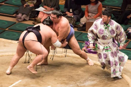 японские борцы сумо