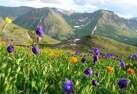 горы в Бурятии