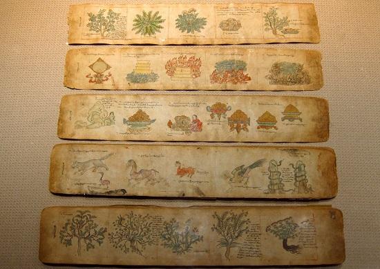 тибетский медицинский трактат
