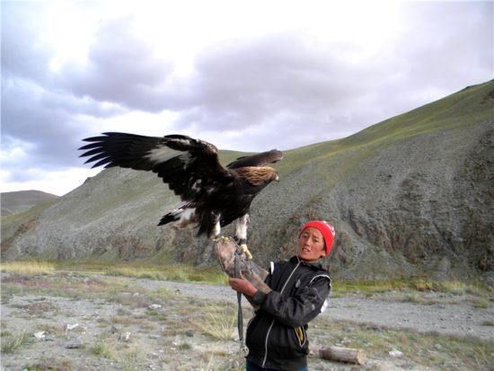 орел в Бурятии