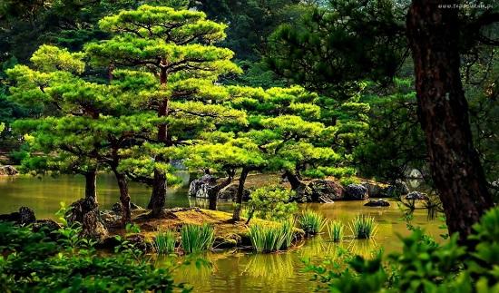 Японских островов