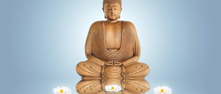 лотосы и будда